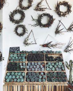 """Polubienia: 8,805, komentarze: 15 – Sasha Masiuk   Tattoo Artist (@sashatattooing) na Instagramie: """"🖤💚 #botanical #love #LA #California #sashatattooingmood"""""""
