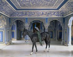 Sikander's Entrance - photograph by Karen Knorr. This gorgeous photo is a part of Knorr's  new book called India Song, which combines opulent interiors from northern India w/ images of local animals.