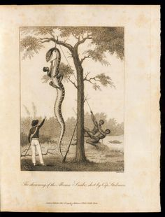 1796 - Narrative, of a five years' expedition, against the revolted negroes of Surinam, in Guiana, on the wild coast of South America; from the year 1772, to 1777  Author, Contributor Stedman, John Gabriel - E-RARA