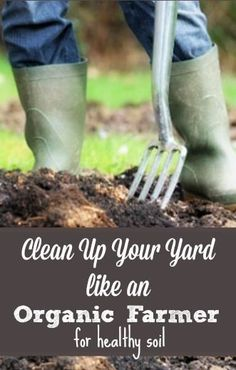 Just like on an organic farm, fall cleanup in your garden should be aimed at keeping your soil healthy come spring. | Rodale Wellness