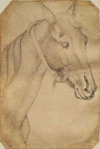 Etude de tête de cheval-Pisanello. Pisanello (1395-1456) fut un médailliste et un peintre très recherché que les cours italiennes les plus raffinées du Quattrocento se disputaient. Chanté par les poètes, estimé par les humanistes, il était réputé pour la virtuosité avec laquelle il savait rendre la nature.