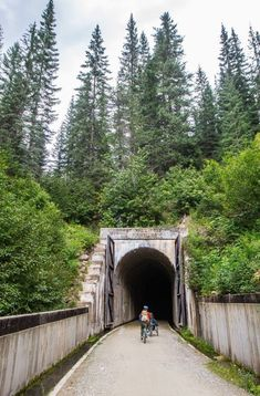 """Planning a trip to Idaho this year? Gear up and add adventure to your """"to-do"""" list with the route to Hiawatha, Idaho - The USA's most famous rail to trail bike paths! #IdahoTravel #IdahoTourism #RoadTripIdeas #USRoadTrips #FamilyTravel Bike Trails, Biking, Hiawatha Trail, Bike Path, Road Trip Hacks, Great Vacations, Road Trip Usa, Idaho, Cool Places To Visit"""