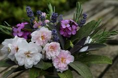 10 Best Garden Foliage Plants For Flower Arranging The garden can be a great source of foliage for flower arranging if you plant the right things. Whether you are arranging a few flowers in a vase in the house or decorating a church access to the right foliage is a...