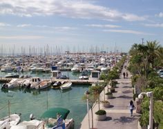 Port de Alcudia Mallorca - Spain
