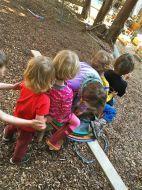 Consortium for Children and Families