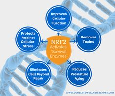 As seen on the http://CompleteWellnessReport.com.  NRF2 activates survival enzymes to protect your DNA against the damage related to aging and oxidative stress. Learn more about NRF2 activation and its ability to protect us at the Complete Wellness Report.