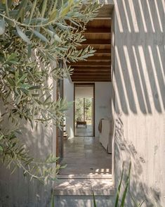 "apieceapartInspiration notes: T-House in Turkey, ""A house for a couple who yielded to ""the pull of the land"" and settled in this Aegean village to start an olive grove."" via ArchDaily"