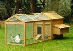 Estabeleça metas. Crie uma planta de seu galinheiro com base em necessidades atuais ou futuras. Pergunte-se quantas galinhas você preten...