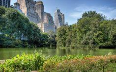 Central Park NYC #ArlenViaggi