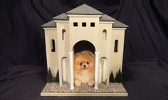 Totally worth 900$....Luxury Indoor Dog House - The Villa by Simba's Castles.