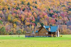 Assaggidiviaggio: New England on the road: terzo giorno New England, House Styles, Fall, Travel, Autumn, Viajes, Trips, Traveling, Tourism
