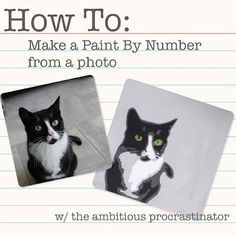 DIY Paint By Numbers How To:  Make a Paint By Number from a photo | 9.01.2011 | http://www.theambitiousprocrastinator.com/search?q=diy+paint+by+numbers+from+a+photo