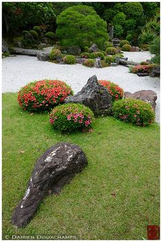 Rock garden in summer, Chion-in temple