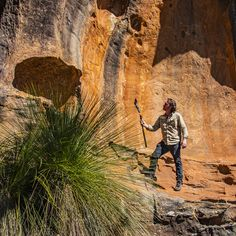 Hike through the Australian wilderness from the comfort of your home. Interact with me as we explore and learn about our diverse rangr of plants and animals. Travel Planner, Sydney Australia, Tour Guide, Wilderness, Grand Canyon, Waterfall, This Is Us, Wildlife, Hiking