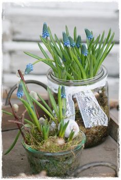 Station Blue and white. Blue Green, Blue And White, Spring Blooms, Colorful Garden, Vintage Decor, Bouquet, Pretty, Flowers, Plants