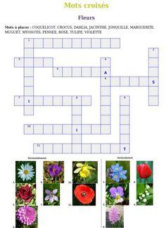 """Résultat de recherche d'images pour """"vocabulaire cp fleurs"""""""
