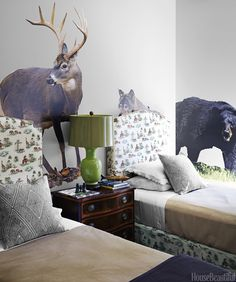 A trip on the wild side - in your room!