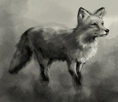 http://idrawgirls.com/tutorials/wp-content/uploads/2012/02/fox-drawing.jpg