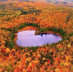 Lake heart in autumn