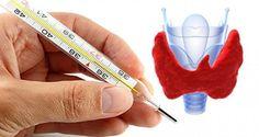 Vérifiez l'état de votre thyroïde chez vous: Il suffit d'un thermomètre!