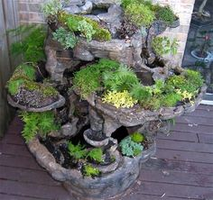 Justin Roth uploaded this image to 'faux bois hypertufa coffee table'.  See the album on Photobucket.