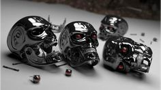 Terminator Heads