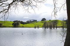 Lake McLaren | © Elyse Childs Photography New Zealand Lakes, Autumn Park, River, City, Photography, Outdoor, Outdoors, Photograph, Rivers