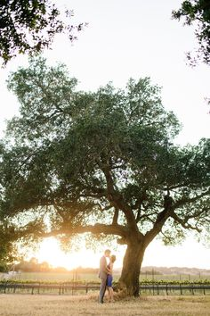 Photography: Mirelle Carmichael Photography - mirellecarmichael.com  Read More: http://www.stylemepretty.com/california-weddings/2014/08/05/al-fresco-santa-ynez-engagement/