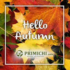 Ha llegado el #otoño a #primichi!! Descubre las novedades en zapatos, bolsos y complementos en primichi.com