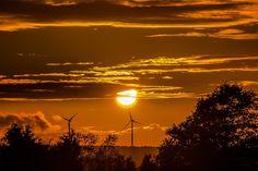 Napnyugta, Sun, Windräder, Felhők, Erdő, Fák