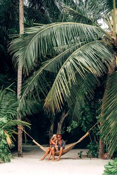 Get inspired to decorate your home with Backyard Palm Trees, many types which you may choose from. Transform your home feel like to be a tropical resort. Luxury Boat, Honeymoon Island, Honeymoon Trip, Honeymoon Destinations, Tropical Paradise, Travel Goals, Island Life, Summer Vibes, Summer Beach