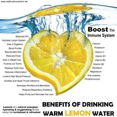 Why Warm Over Cold? Drinking lemon water warm rather than cold makes it is easier for the body to absorb the nutrients and benefits. Cold water can shock or stress to the body resulting in taking more energy to process.  There are many immune boosting remedies out there that calls for lemon, whats your favorite?