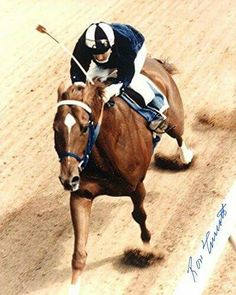 Secretariat with Ron Turcotte up - rare shot without those checkered blinkers!