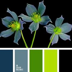 Strict and at the same time the original palette consisting of muted shades of blue, spring colors green and black. Rich green balances the other colors, creating a balance, so that the combination of looks fresh and neizbity. This color scheme will transform the office manager, also an excellent solution for business style.: