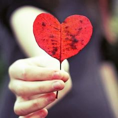 Love is everywhere #magia cartomantidellaluce.com