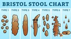 Bristol Stool Chart What Your Poop Says About Health Mama Natural