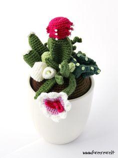 Amigurumi - composizione piante grasse cactus e fiori a uncinetto
