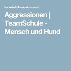 Aggressionen | TeamSchule - Mensch und Hund