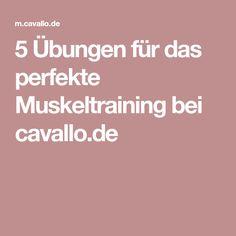 5 Übungen für das perfekte Muskeltraining bei cavallo.de