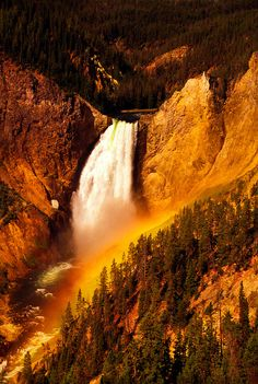 Yellowstone Falls ~ Yellowstone National Park, Wyoming