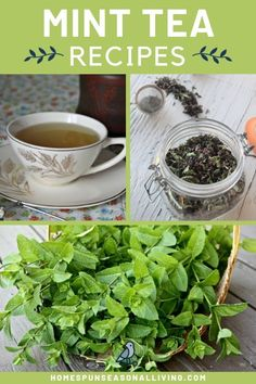 Learn how to make homemade mint tea with these easy blend ideas. Get the health benefits of mint tea along with flavorful mixes for both fresh and dried mint on the blog. Mint makes the perfect herbal tea with the sweet smell and beautiful green color. Give your senses a treat with this one. #herbalremedies #howtomake #homemade #minttea #tea @homespunseasonalliving