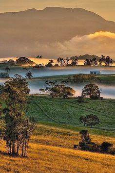 Mount Bellenden Kerr Queensland Australia