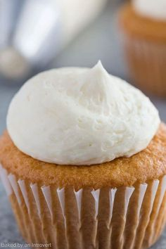 Basic Vanilla Buttercream Frosting is so versatile, you can use it for just about anything. Made with 5 ingredients, this frosting comes together in a snap.