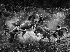 sony-world-photography-awards-2014-gagnant-9