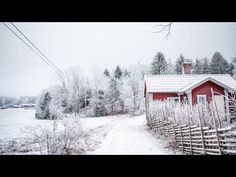 How I decorate my house for Christmas, Swedish countryside style! Swedish Christmas Food, Swedish Christmas Traditions, Swedish Christmas Decorations, Christmas Kiss, Christmas Fashion, Scandinavian Christmas, Christmas Wreaths, Christmas 2019, Christmas Crafts