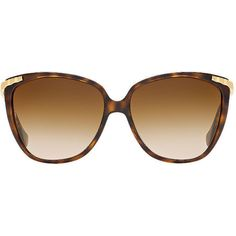 Dolce & Gabbana Dd8096 Brown Cat Sunglasses ($135) ❤ liked on Polyvore featuring accessories, eyewear, sunglasses, dolce&gabbana, wraparound sunglasses, cat glasses, cat sunglasses and brown sunglasses