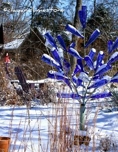 Southern Blue Bottle Tree- my grandmother has one and it's very cool