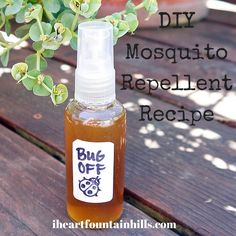 I never thought I would need mosquito repellent in Fountain Hills, but after much rain and stagnant water, our little town has become a mosquito haven for the past several weeks. Not wanting to us...