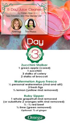 Day 3 of the 5 Day #Juice #Cleanse. Cleanse Away #Impurities & #Toxins with Omega Juicers!