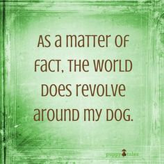 As a matter of fact, the world does revolve around my dog... #doglove